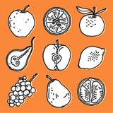Fruits set Royalty Free Stock Image