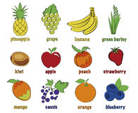Fruits. Set of colorful cartoon fruit icons orange, strawberry, apple, banana, pineapple, mango, peach, kiwi, grape, cassis blueberry green barley Vector Stock Images