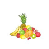 Fruits set group of fresh tropical collection Royalty Free Stock Photos