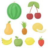Fruits set icons in cartoon style. Big collection of fruits vector symbol stock illustration Stock Image