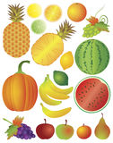 Fruits Set Illustration Royalty Free Stock Photography
