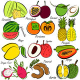 Fruits set Stock Photos
