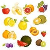 Fruits Set isolated. Vector Illustration Stock Photo
