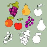 Fruits set. In  simple style Stock Images