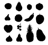 Fruits Silhouette -Vector Stock Photo