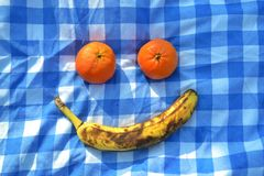 Fruits simulating an smile. A banana and two orange simulating a smile in a picnic royalty free stock image