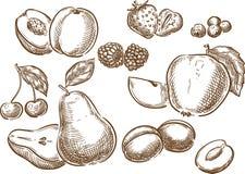 Fruits. royalty free stock photo