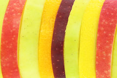 Fruits Slices background Royalty Free Stock Images