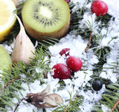 Fruits in the snow Royalty Free Stock Photography