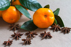 Fruits and spices Royalty Free Stock Photos