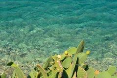 Fruits on Spinalonga Island stock images