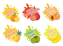 Fruits splash set of labels. Fruit splashes, drops emblem and blot collection. Vector illustration Stock Photos