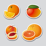 Fruits stickers Stock Image