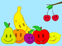 Fruits still life doodle face. Fruits still life doodle smiling face royalty free illustration