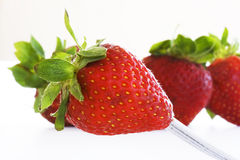 Fruits - Strawberries. On white background. This picture is part of the series perfecting macros Royalty Free Stock Photos