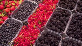 Fruits: strawberries, blackberries, red currants, raspberries in special trays on the counter in the supermarket