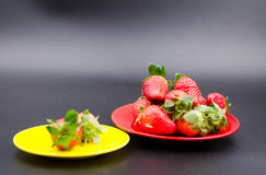 Fruits:strawberry Stock Photography