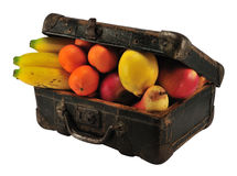 Fruits in suitcase royalty free stock photos
