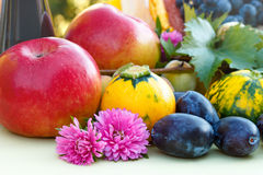Fruits of summer and fall Stock Images