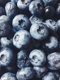 Fruits summer taste black blueberry Royalty Free Stock Images