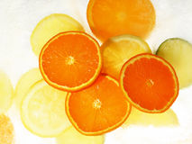 Fruits sur la glace Images libres de droits