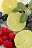 Fruits sur la glace Photos libres de droits