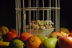 Fruits surrounding a cage with sweets enclosed stock photo