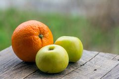 Fruits on table in garden Stock Photography