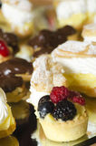 Fruits tarts and chocolate cookies. Tarts with fruits: raspberries, oranges, blueberries, cherries and grapes Stock Image