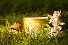 Fruits tea cup and blooming apple flower Stock Photos