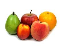 fruits team 免版税库存照片