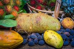 Fruits thaïlandais dans le jardin pour amener des touristes manger Images libres de droits