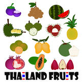 Fruits From Thailand. Various fruits from Thailand with thai flag Stock Images