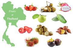 Fruits of Thailand Stock Image
