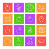 Fruits Thin Line Icons. Set of 16 thin line fruits and berries icons royalty free illustration