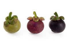 Mangosteen Royalty Free Stock Images