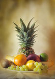Fruits tropical still life Royalty Free Stock Images