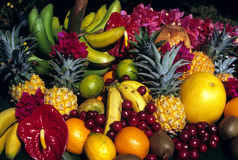 Fruits tropicaux Images libres de droits