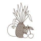 Fruits tropicaux délicieux d'été sur le fond blanc illustration de vecteur