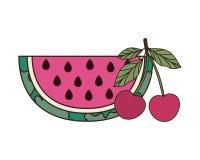 Fruits tropicaux délicieux d'été sur le fond blanc illustration libre de droits