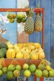 Fruits tropicaux du marché brésilien d'agriculteurs Photos libres de droits
