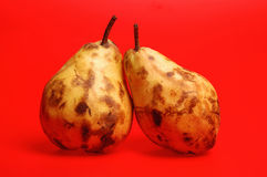 Fruits,two pears on a red background Royalty Free Stock Images