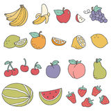Fruits. Various fruit illustrations. Leaves and citrus slices can be separated in vector file Stock Photos