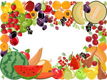 Fruits, vecteur illustration libre de droits