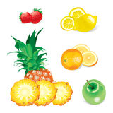 Fruits (vector) Stock Photo