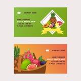 Fruits vector business card fruity apple banana and exotic papaya background fresh slices of tropical dragonfruit juicy. Orange illustration fruitful backdrop stock illustration