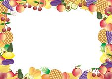 Fruits vector frame Royalty Free Stock Images