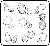Fruits vector hand drawn Stock Images
