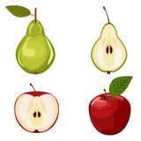 Fruits vector illustration apple and pear Stock Photos