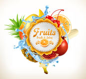 Fruits vector label Stock Images